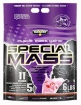 Special Mass Gainer 6 lb